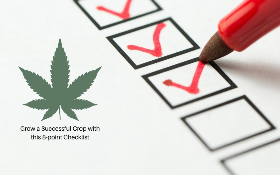 Thinking of Growing Your Own Legal Cannabis?This 8-Point Checklist Will Ensure Beginner Success