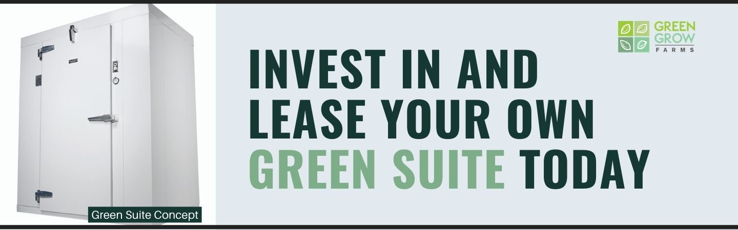 Lease Your Own Green Suite